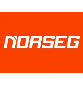 Norseg
